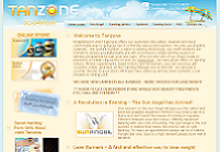 CLICK TO ENLARGE : Web Development : Tanzone